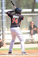 Miami Marlins outfielder KJ Woods #74 at bat during an Instructional League intramural game on September 30, 2014 at Roger Dean Complex in Jupiter, Florida.  (Stacy Jo Grant/Four Seam Images)