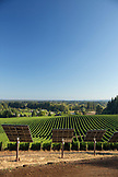 USA, Oregon, Willamette Valley, rows of vines and solar panels at the Sokol Blosser Winery, Dayton