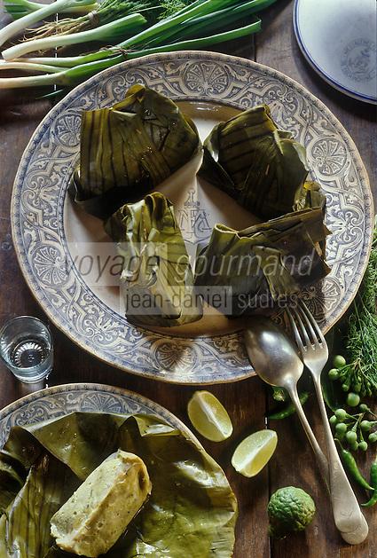 Asie/Laos/Ile de Khone: Poisson à la vapeur de l'auberge: Sala Done Kong