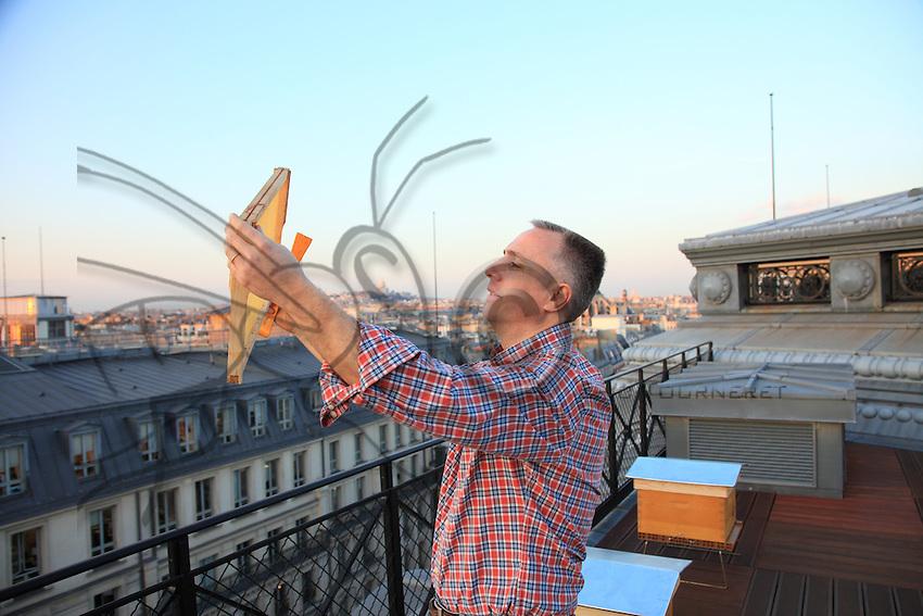 Louis Vuitton apiary