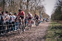 Jelle Wallays (BEL/Lotto-Soudal) leading the race over the infamous Arenberg Forest / Bois de Wallers cobbles.<br /> <br /> 116th Paris-Roubaix (1.UWT)<br /> 1 Day Race. Compiègne - Roubaix (257km)