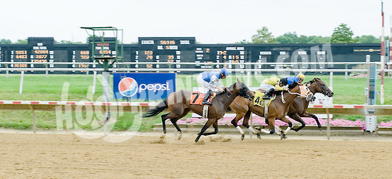 Sweet Valor winning at Delaware Park on 8/1/12