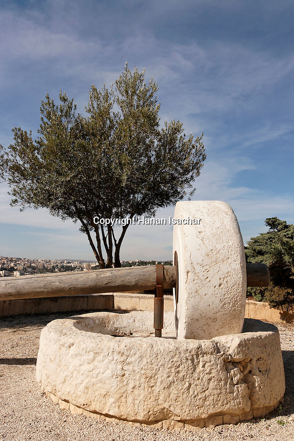 Israel, Jerusalem, The Brigham Young University (Mormon University) on Mount Scopus, an ancient olive press<br />