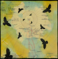 Encaustic mixed media photography on antique map of South Pole with birds in blue, green, & yellow