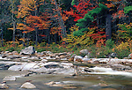View along the Swift River, White Mountains National Forest, New Hampshire, USA