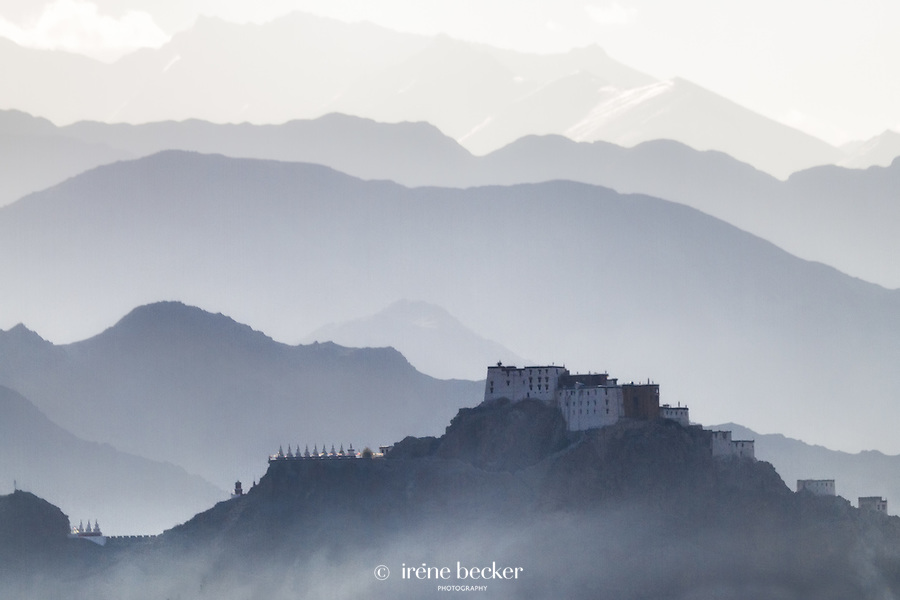 Shey Monastery. Leh, Jammu and  Kashmir,  India