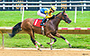 Ask Me I Might winning at Delaware Park on 7/5/17