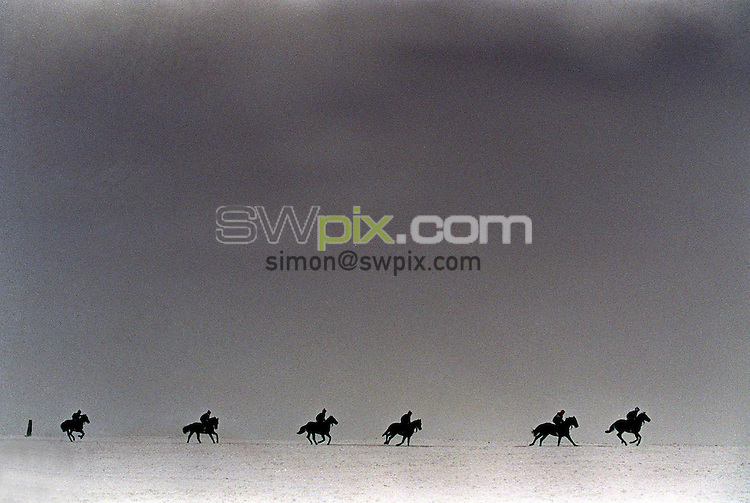 Pix:Michael Steele/SWpix...Horse Racing. Horse Gallops, Middleham, 1995...COPYRIGHT PICTURE>>SIMON WILKINSON..Horse Gallops, Middleham.