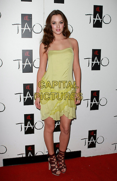 LEIGHTON MEESTER.hosts at Tao in the Venetian resort hotel and casino, Las Vegas, Nevada, USA, .2nd January 2010..full length green dress ruffles ruffle sandals strappy yellow maroon open toe tied burgundy heels open toe lace-up .CAP/ADM/MJT.©MJT/Admedia/Capital Pictures