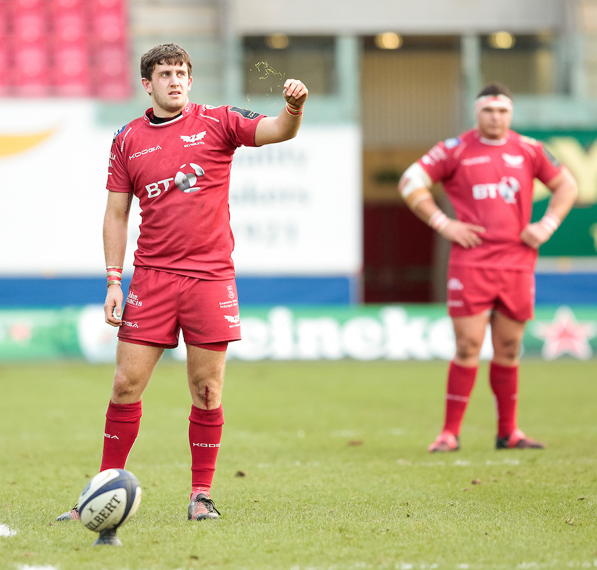 Scarlets' Dan Jones checks the wind <br /> <br /> Photographer Simon King/CameraSport<br /> <br /> European Rugby Champions Cup Pool 3 - Scarlets v Saracens - Sunday 15th January 2017 - Parc y Scarlets - Llanelli <br /> <br /> World Copyright &copy; 2017 CameraSport. All rights reserved. 43 Linden Ave. Countesthorpe. Leicester. England. LE8 5PG - Tel: +44 (0) 116 277 4147 - admin@camerasport.com - www.camerasport.com