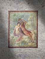 Roman Nero Period fresco wall painting of Perseus and Andromeda, Naples National Archaeological Museum, from a house in the Insula Occidentalis at Pompeii , inv 9058 ,