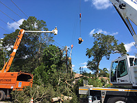 2017 FPL Hurricane Irma restoration in Sarasota County, Fla. on Sept. 13, 2017.