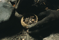 "The dry plant, ""Acanthaceae lapidagathis sp."" crumbled over the crucible filled with pellets is the same plant added to the clay mixture to make the walls of the furnace heat resistant"
