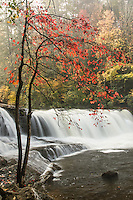 Hooker Falls and autumn colors at sunrise, Dupont State Forest, near Brevard, North Carolina