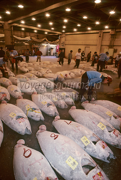 Asie/Japon/Tokyo/Tsukiji: Le marché aux poissons - Détail des thons congelés