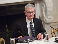 Apple CEO Tim Cook participates in an American Technology Council meeting at The White House in Washington, DC, June 19, 2017. <br /> Credit: Chris Kleponis / CNP /MediaPunch