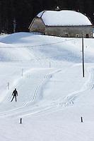 Europe/France/Franche Comté/39 /Jura/Les Moussières: Ski de fond dans le Haut-Jura //  France, Jura, Les Moussieres: Skiing in the Haut-Jura