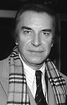 Martin Landau  (1928-2017)