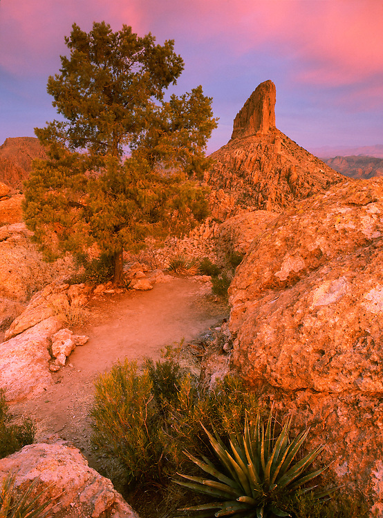 Weaver's Needle in the Superstition Mountains Wilderness area, Arizona, United States of America