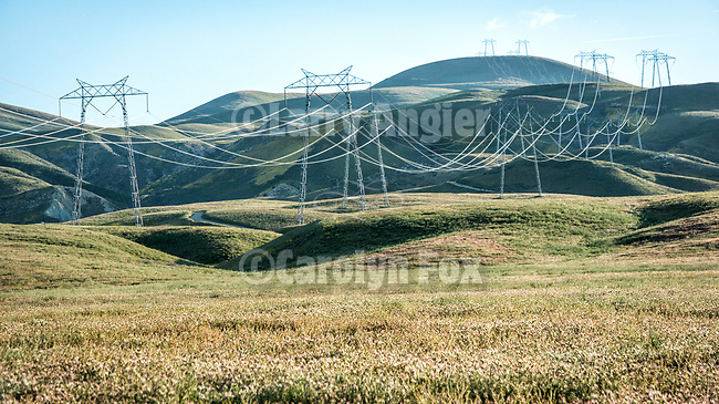 Transmission towers and lines march up and over the Temblor Range, Carrizo Plain California.