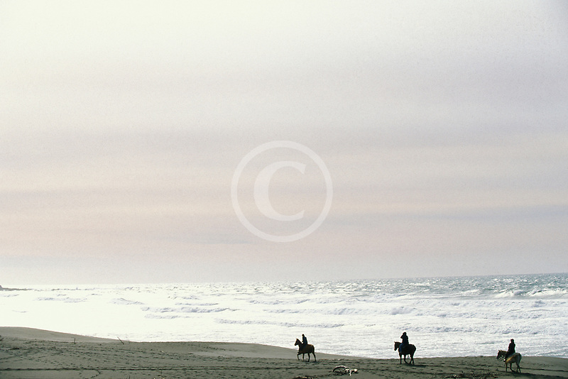 California, Bodega Bay, Horseback riding on the beach, Bodega Dunes
