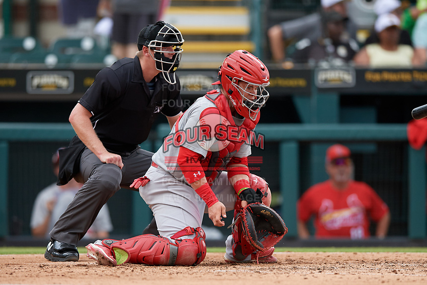 Palm Beach Cardinals catcher Julio Rodriguez (34) blocks a pitch in the dirt in front of umpire Louie Krupa during a Florida State League game against the Bradenton Marauders on May 10, 2019 at LECOM Park in Bradenton, Florida.  Bradenton defeated Palm Beach 5-1.  (Mike Janes/Four Seam Images)