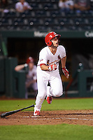 Springfield Cardinals third baseman Paul DeJong (12) at bat during a game against the Northwest Arkansas Naturals on April 26, 2016 at Hammons Field in Springfield, Missouri.  Northwest Arkansas defeated Springfield 5-2.  (Mike Janes/Four Seam Images)