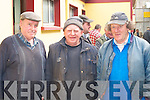 Rockchapel farmers l-r: Aneas Lane, Gus Brosnan and Dan Sullivan looking at the cattle on sale at Castleisland Mart on Wednesday    Copyright Kerry's Eye 2008