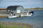 Fishing boats at Port au Choix, Newfoundland