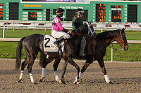 January 17, 2015: West Coast Belle (KY) with Shaun Bridgmohan in the Silverbulletday Stakes at the New Orleans Fairgrounds course. Steve Dalmado/ESW/CSM