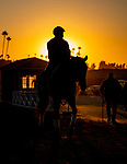 OCT 26: Scenes from Breeders Cup at Santa Anita Park in Arcadia, California on Oct 26, 2019. Evers/Eclipse Sportswire/Breeders' Cup