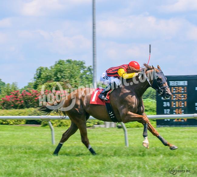 Dattt Melody winning at Delaware Park on 7/17/17