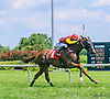 Dattt Melody winning at Delaware Park on 7/17/17