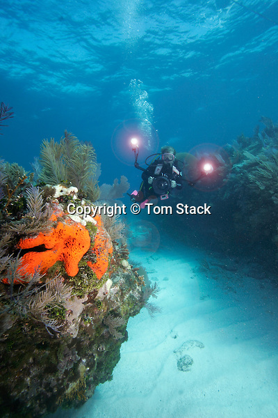 Underwater photographer, Molasses Reef, Key Largo