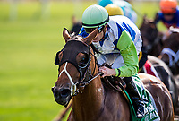 ELMONT, NY - JUNE 09: Hawksmoor and Julien Leparoux win the New York Stakes at Belmont Park on June 9, 2017 in Elmont, New York. (Photo by Alex Evers/Eclipse Sportswire/Getty Images)