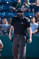Home plate umpire Mitch Leikam during a Northwest League game between the Tri-City Dust Devils and the Everett AquaSox at Everett Memorial Stadium on September 3, 2018 in Everett, Washington. The Everett AquaSox defeated the Tri-City Dust Devils by a score of 8-3. (Zachary Lucy/Four Seam Images)