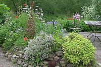 Kräuterbeet mit Salbei, Thymian, Akelei, Mohn, Margartite, Schnittlauch und anderen Pflanzen, Garten, Beet, Kräuter, Gewürze