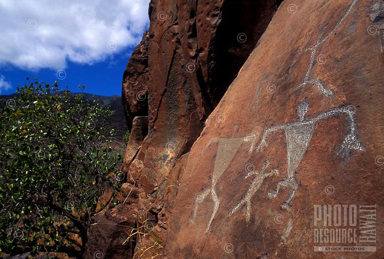 Petroglyphs at Olowalu, Maui