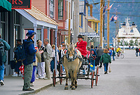 Skagway Alaska horse and carriage tour in historic gold rush town of Skagway, Alaska, end of Alaska's inside passage Lynn Canal.