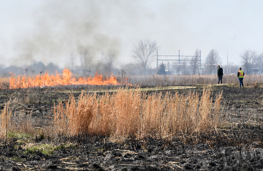 NWA Democrat-Gazette/DAVID GOTTSCHALK  A section of the  Woolsey Wet Prairie Sanctuary burns Monday, March 18, 2019, during a prescribed burn in Fayetteville. The prescribed burn serves as a vegetation management effort to maintain the plant community. Baseline monitoring identified 47 plant species at the site in 2005. At the end of the 2018 growing season, 482 plant species have been observed, 11 of which are species of special concern that are tracked by the Arkansas Natural Heritage Commission.