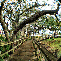Wooden walkway, Holly Hill, Florida, iPhone photo from the archive at www.bcpix.com. (Photo by Brian Cleary/www.bcpix.com)