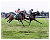 Papadopalous (#5) winning thru the DQ of Troubled Waters (#2) at Delaware Park on 8/30/14