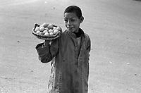 Egipto, 1991