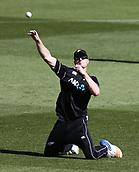 3rd February 2019, Westpac Stadium, Wellington, New Zealand;5th ODI Cricket International  match, New Zealand versus India;  Black Caps Jimmy Neesham fields