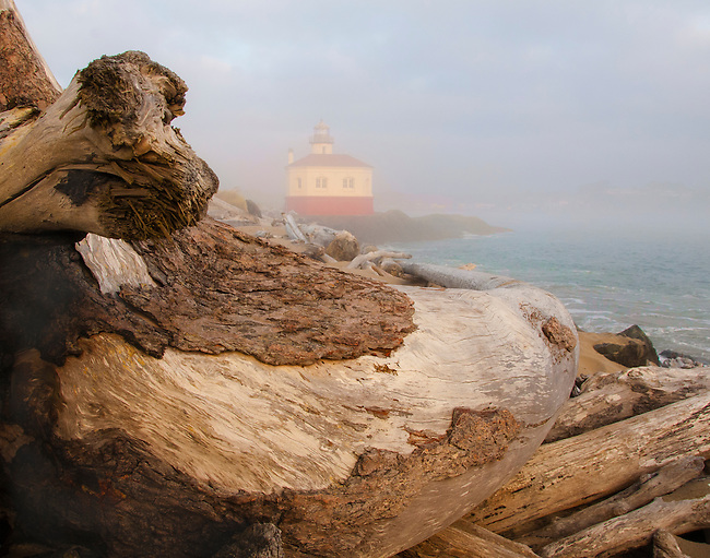 Driftwood log at the Coquille Lighthouse, Bandon, Oregon.