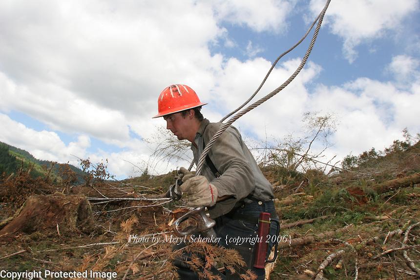 Logging in Southwest Washington.
