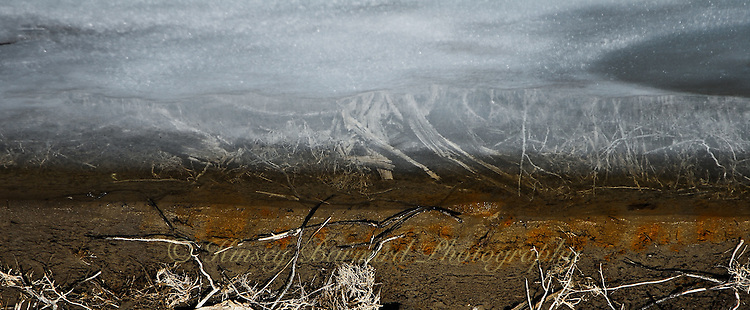 """LOST IN ICE""<br />