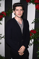 Carter Jenkins<br /> at the Land Of Distraction Launch Party, Chateau Marmont, Los Angeles, CA 11-30-17<br /> David Edwards/DailyCeleb.com 818-249-4998