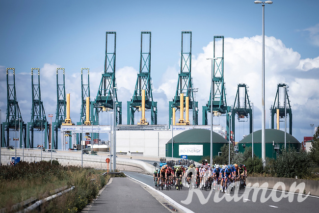 Peloton racing through the Port of Antwerp<br /> <br /> Antwerp Port Epic 2019 <br /> One Day Race: Antwerp > Antwerp 187km<br /> <br /> ©kramon