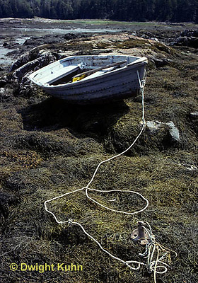 AC04-001b  Fishing boat on seaweed covered beach - Maine coast